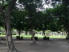 大安公園. Da'an Park.